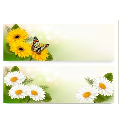 Summer banners with colorful flowers and butterfly vector image