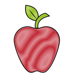 Delicious apple fruit vector