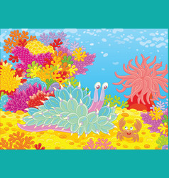 Mollusc and crab among corals vector