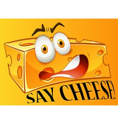 Say cheese expression on yellow vector