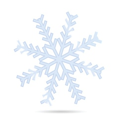 Snowflake one vector