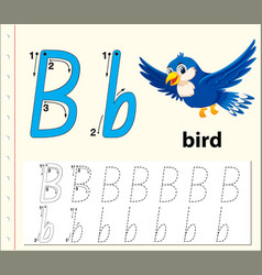 Trace letter b vector