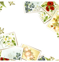 some flower photos vector image