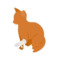 Cat with broken paw icon isometric 3d style vector image