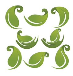 green leaves signs and symbols collection vector image