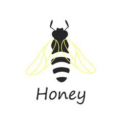 bee honey vector image