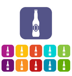 bottle of beer icons set vector image vector image