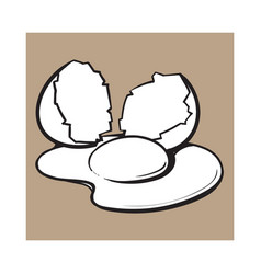 Cracked broken and spilled chicken egg sketch vector