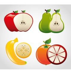Fruit fresh vector