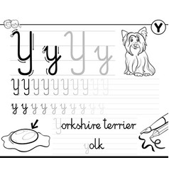 learn to write letter y workbook for children vector image