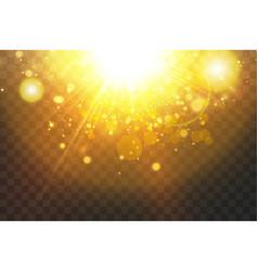 Shining golden stars isolated on black background vector