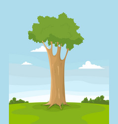spring tree in a field vector image