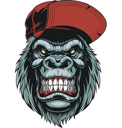 monkeys head in a baseball cap vector image vector image