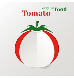 Abstract Paper Tomato vector image