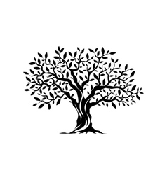 Olive tree silhouette icon isolated on white vector