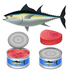 Tuna fish can steak mockup set realistic style vector