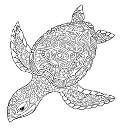 Turtle coloring page vector