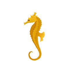 yellow long-snouted seahorse marine animal sea vector image