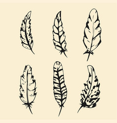 hand drawn feather set outline silhouette feather vector image vector image