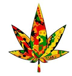 marijuana leaf in Rastafarian colors vector image vector image