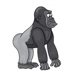 Cartoon male of gorilla with baffled face vector