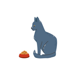 elegant grey cat sitting near bowl with food blue vector image