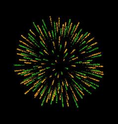 firework isolated beautiful salute on black vector image
