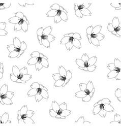 sakura cherry blossom outline on white background vector image