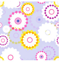 sprin aster flowers vector image
