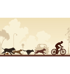 Dogs chasing cyclist vector image vector image