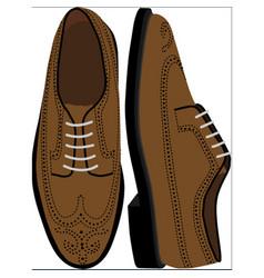 Brown brogue shoe vector