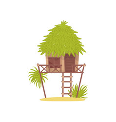 bungalow hut in tropical jungle vector image