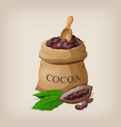 cocoa beans in a bag vector image