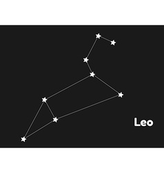 constellation leo vector image