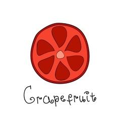 Doodle grapefruit slice vector