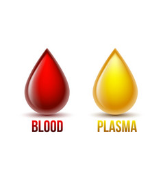 drop blood and drop blood plasma blood vector image