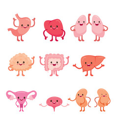 Human internal organs cartoon characters set vector