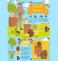 natural honey and beekeeping vector image