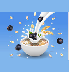 oats in bowl with black currants vector image