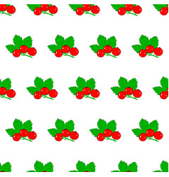 seamless pattern from red currant with leaves on vector image