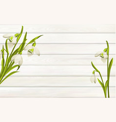 Spring flowers background for your design wooden vector