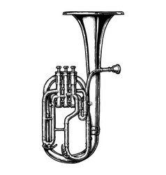 vintage of tenor horn vector image
