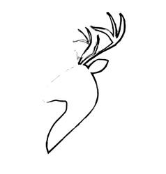 deer animal icon vector image vector image