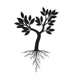 Black apple tree and roots vector