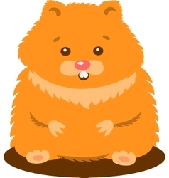 Cute Baby Hamster Isolated vector