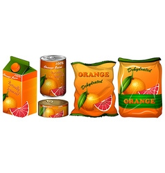 Dehydrated orange in different packaging vector