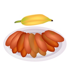 Delicious Sun Dried Bananas on A Dish vector image