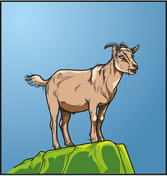 Goats vector image