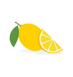 lemon slice citrus fruit flat icon vector image