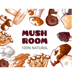 mushroom frame background vector image